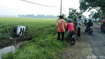 Sopir Ngantuk, Mobil Siaga Desa Muat Ayam Terjun ke Sawah