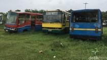 Puluhan Bus dan Mikrolet Membusuk di Terminal Rawa Buaya