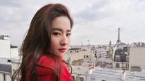 Liu Yi Fei Tampung 50 Kucing Liar di Rumah Mewah