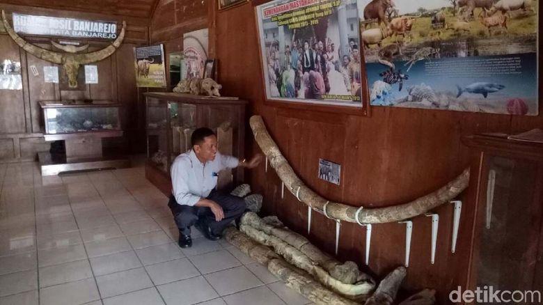 Fosil Purba di Banjarejo Grobogan Tersimpan Seadanya