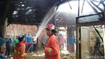 Bediang Sapi, Ludeskan Rumah Warga di Rembang