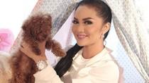Gaya Artis Indonesia dengan Jam Tangan Mewah Seharga Ratusan Juta Rupiah