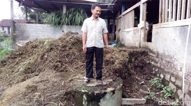 Digester tempat menampung kotoran ternak