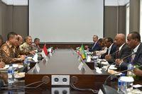 Ethiopia Tertarik Pelajari Pengembangan Listrik di RI