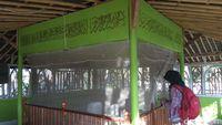 Kondisi makam Syekh Kudus Jana Pura di Desa Sedari (Luthfiana Awaludin/detikTravel)