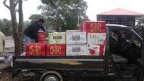 Penyelundupan 1 Ton Buah Asal Malaysia Via Kaltara Diamankan