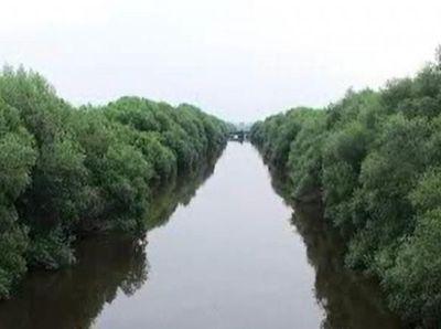 Melepas Penat di Hutan Mangrove Jakarta