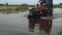 Foto: Banjir Masih Genangi Aceh Utara, Warga Kekurangan Makanan