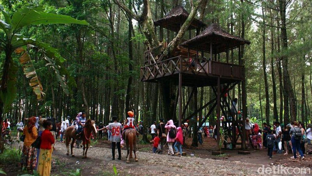 Imbas Erupsi Gunung Agung, Sektor Pariwisata Banyuwangi Meningkat