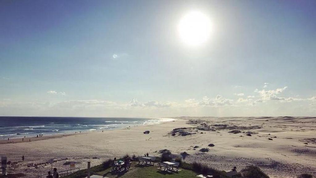 Begini Rasanya Naik Unta di Pantai Australia