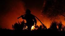 Kebakaran Hutan Hanguskan California Selatan, 212 Ribu Warga Mengungsi