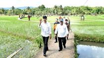 Jokowi Pastikan Perbaikan Pasca Bencana di Gunung Kidul dan Pacitan