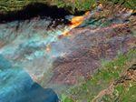 Seorang Petugas Pemadam Tewas dalam Kebakaran Ganas di California
