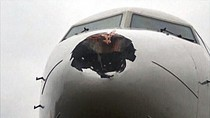 Hidung Pesawat Rusia Bolong Gara-gara Ciuman Dengan Burung