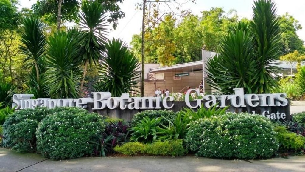 Yang Segar di Tengah Kota Singapura, Singapore Botanic Gardens
