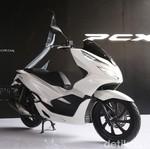 Mampukah PCX Lokal Masuk Daftar 10 Motor Terlaris Seperti Nmax?