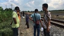 Buruh Angkut Gabah di Bojonegoro Tewas Diserempet Kereta