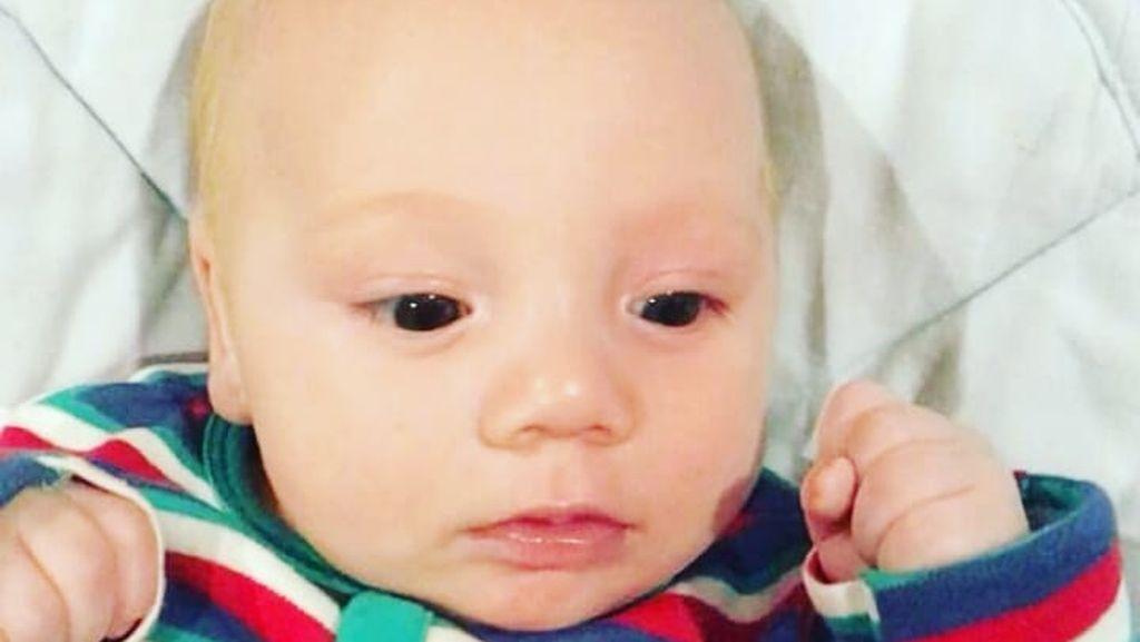 Imutnya Baby Cio, Putra Celine Evangelista dan Stefan William