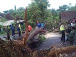 Puting Beliung Terjang 3 Desa di Magetan, Puluhan Rumah Rusak