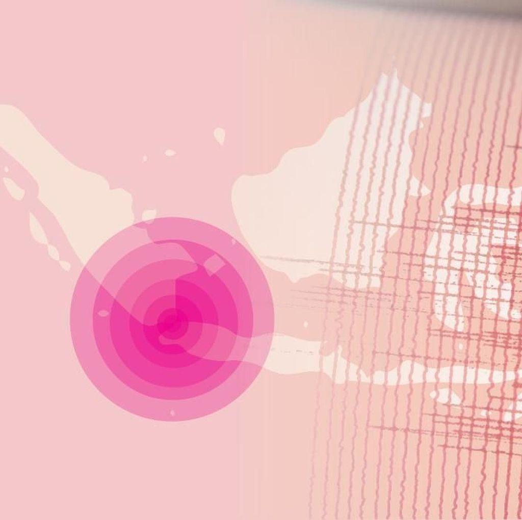 Gempa 4,5 SR Guncang Halmahera Utara