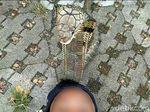 ABG Syahril Kerap Atraksi dengan King Kobra untuk Donasi