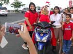 Pakai Baju Santa, Anjing Pintar di Manado Naik Motor Keliling Kota