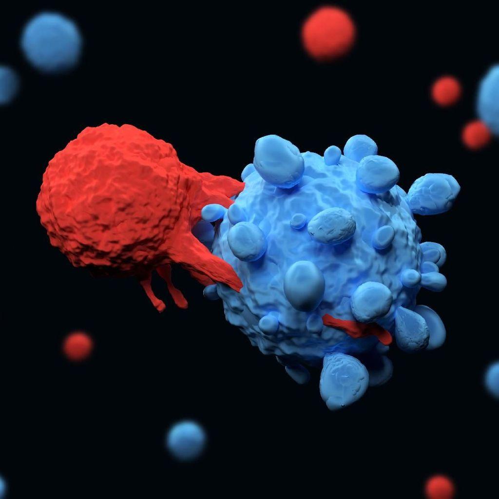 Amerika Mau Sunting Gen Manusia untuk Lawan Kanker