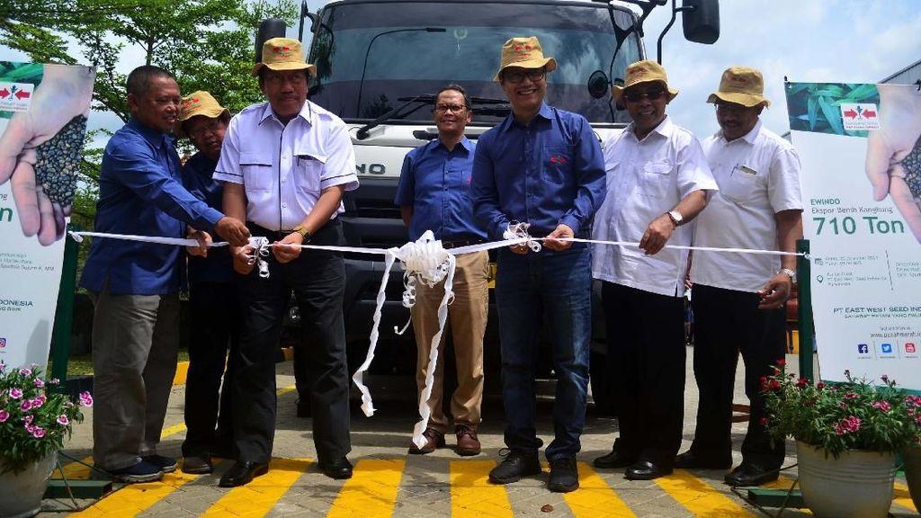 Benih Kangkung Produksi Petani Lokal Mulai Diekspor