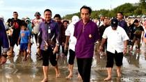 Jokowi, Raja Ampat dan Bali