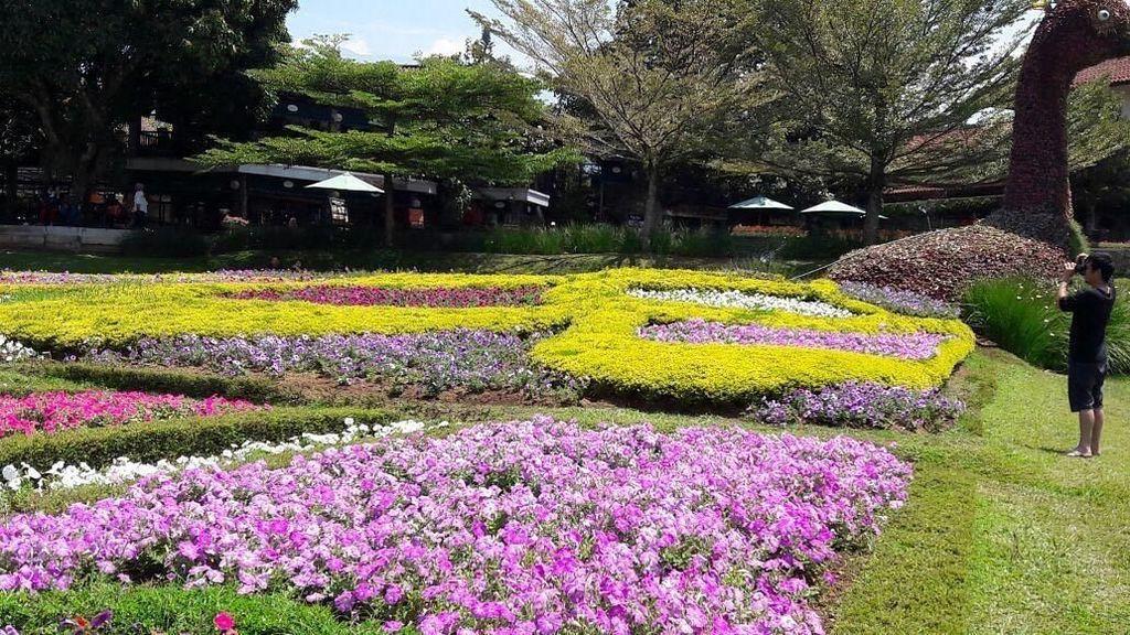 Biar Mama Senang di Hari Ibu, Ajak Liburan ke 5 Taman Cantik Ini
