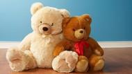Menghibur Anak-anak yang Sakit dengan Memeluk Teddy Bear