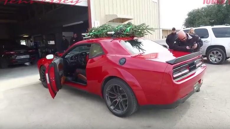 Bisa Gerak sampai 284 Km/Jam, Ini Pohon Natal Tercepat Dunia