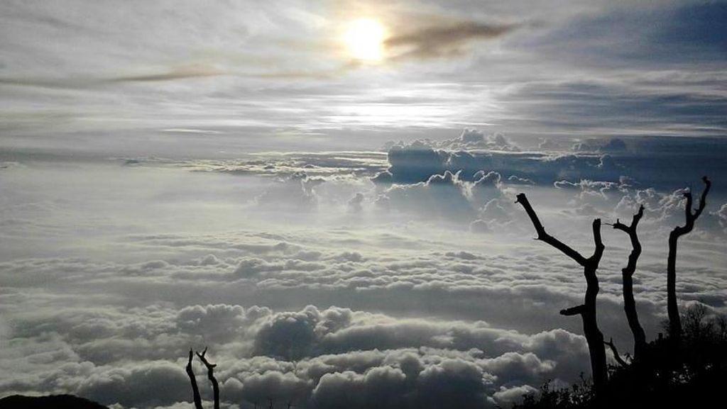 Perjuangan Mendaki Gunung Slamet