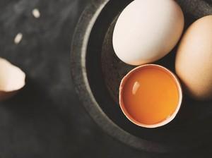 Konsumsi Telur Satu Butir Per Hari Bisa Bikin Anak Lebih Cerdas!