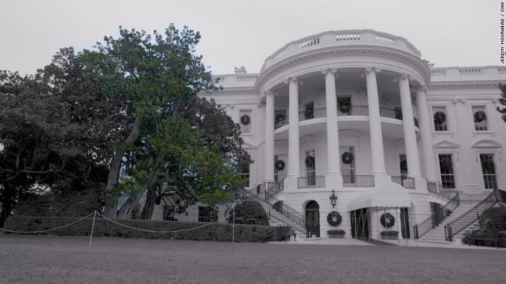 Kisah Pohon Tua Gedung Putih, Saksi Kampanye Keji di AS