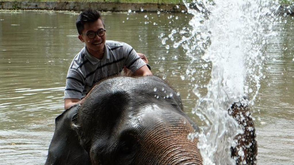 Ini Rasanya Mandiin Gajah di Lampung