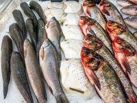 Sudah Siap-siap Bakar Ikan? Perhatikan Dulu 5 Tips Ini