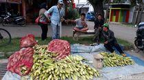 Pedagang Jagung di Kabupaten Bandung Menjamur Jelang Tahun Baru