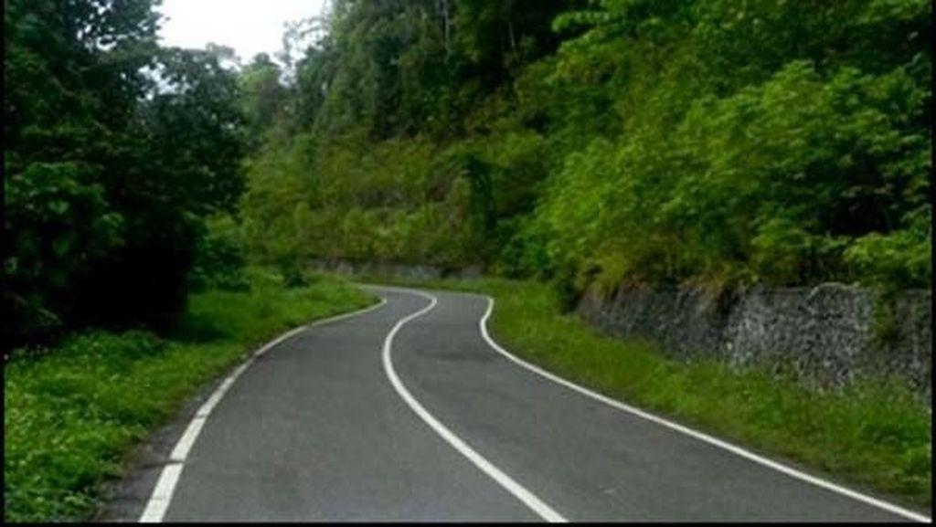 Keren! Trans Papua Tembus Hutan, di Antara Bukit dan Laut