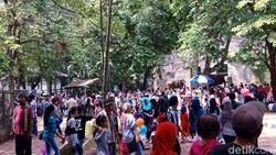 84 Ribu Pengunjung Padati Ragunan Siang Ini
