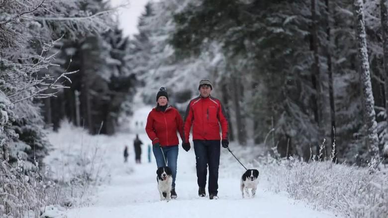 Foto: Saat Hamparan Salju Putihkan Tanah Inggris Raya