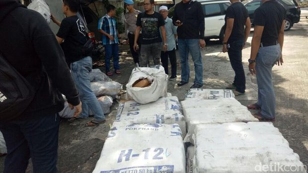 Polres Jakarta Barat Ungkap 1,3 Ton Ganja Asal Aceh