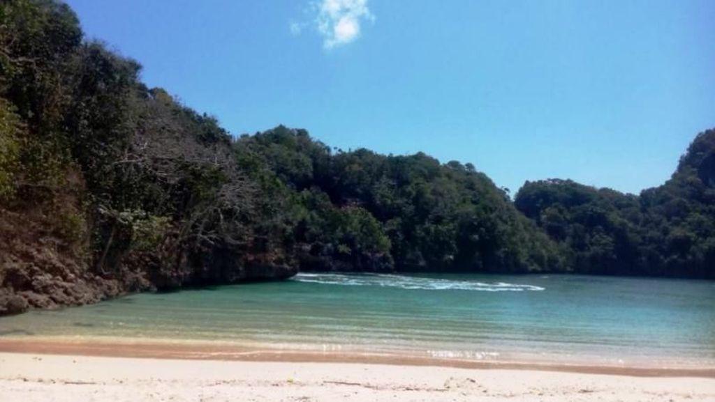 Mengintip Pulau Konservasi Cantik Punya Malang, Sempu