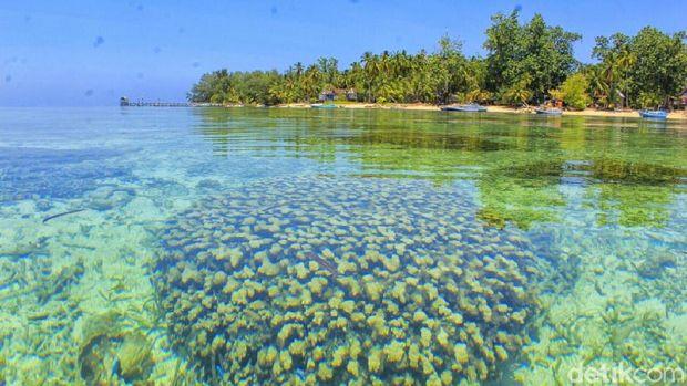 Pulau Kapoposang yang indah bukan main (Moehammad Bakrie/detikTravel)