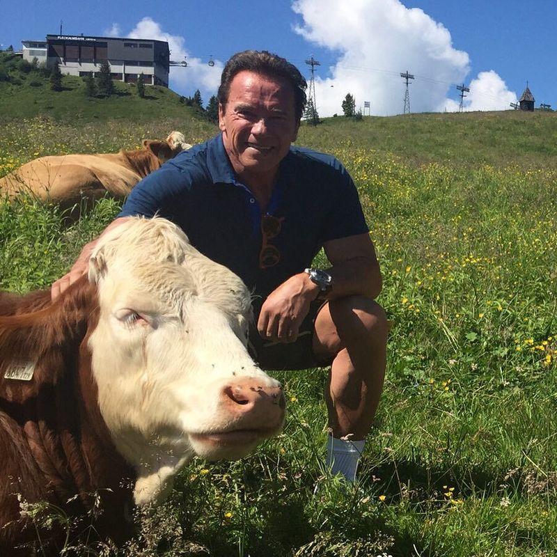 Arnold Schwarzenegger punya hubungan kisah masa lalu dengan Columbus, AS. Sekitar tahun 1970, Schwarzenegger ikut kontes binaraga Mr World, di mana ia meraih posisi juara. Dia pun terus mendukung event terkait body building (schwarzenegger/Instagram)
