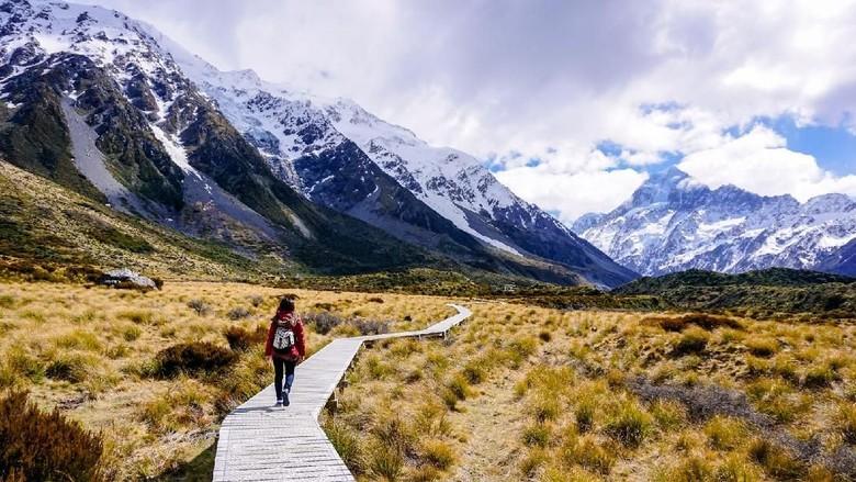 Foto: Keindahan alam Selandia Baru (Thinkstock)