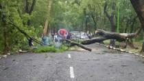 Hujan Disertai Angin Kencang Terjang 2 Kecamatan di Magetan