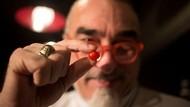 Ini Dia, Tomat Ceri Terkecil di Dunia Asal Israel!