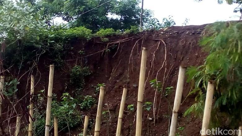 Tanggul Longsor Ancam Peternakan, Pertanian dan Permukiman di Jepara