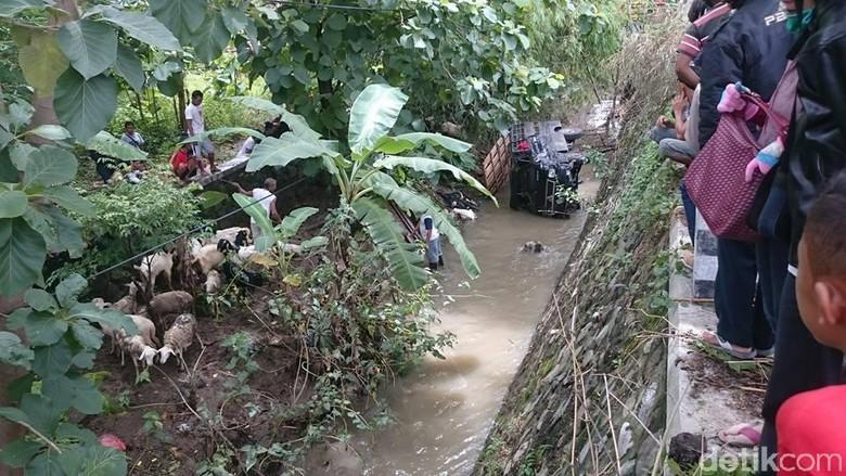 Pikap Terjun ke Sungai, 3 Penumpang Luka dan 6 Ekor Kambing Mati